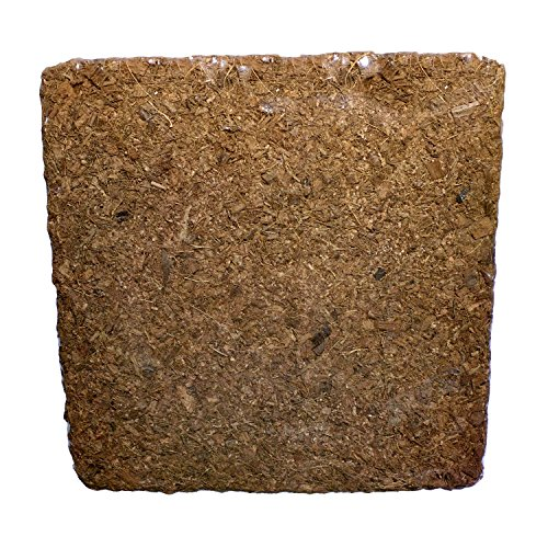 5kg Chunky Coir Block Hydroponic product image
