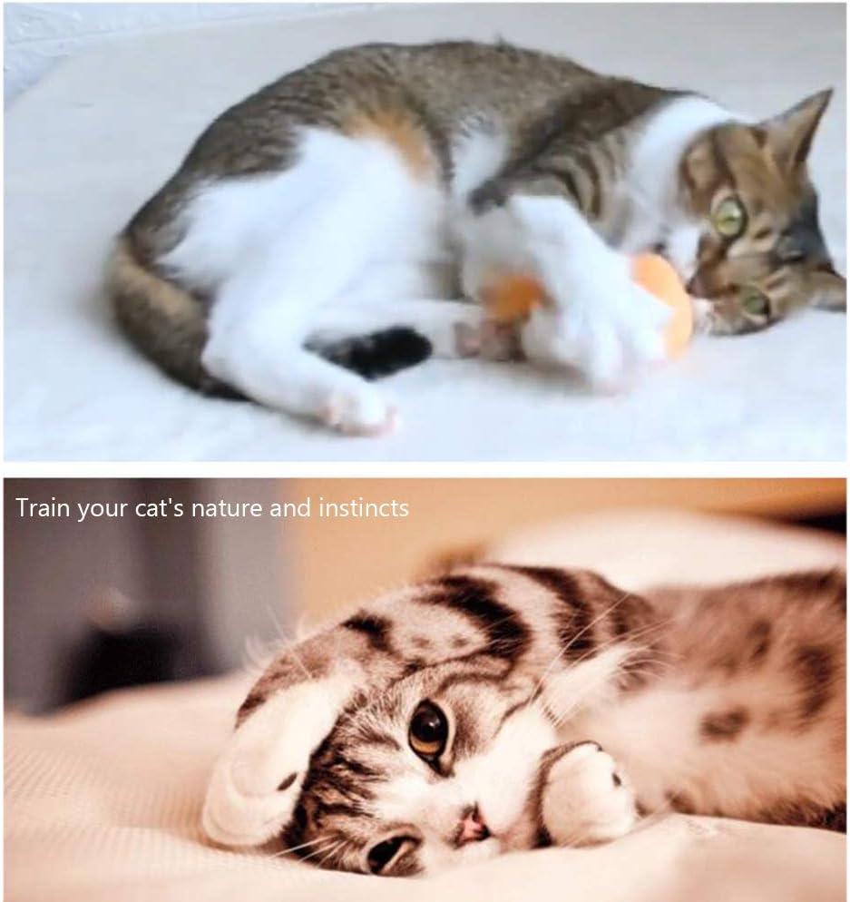 Hihey Pelota de Juguete Catnip Rattle Game Balls con Feather para Mascotas Gatos 3 Piezas Cute Catnip Toy Ball con Pluma