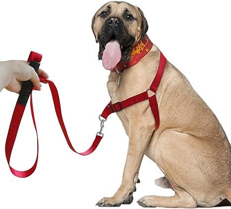 Set de correa y arnés para perro Berry no-pull de nailon para ...