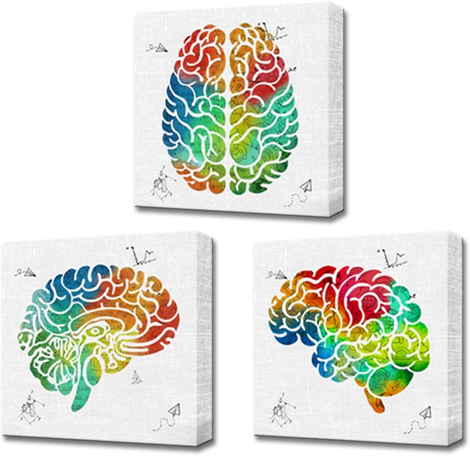 LoveHouse 3 Panel Abstract Brain Canvas Wall Art Colorful Left and Right Brain Science Poster Print Anatomy Canvas Painting Medical Wall Decor for Office Classroom Ready to Hang 16x16inchx3pcs