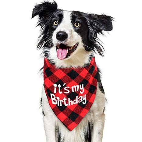 VAMEI Collar Pañuelo del cumpleaños del Perro, Baberos para ...