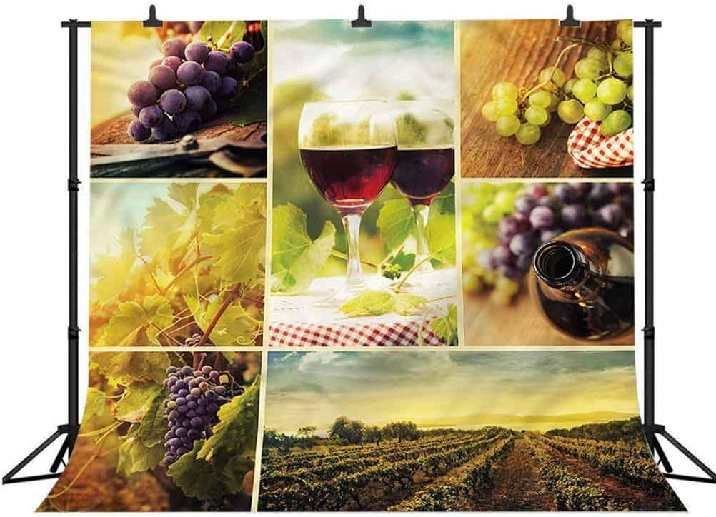5x5FT Vinyl Photography Backdrop,Rustic,Composition of Wine Glasses Photo Background for Photo Booth Studio Props