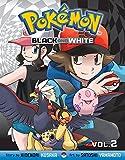 Pokémon Black and White, Vol. 2 (Pokemon)
