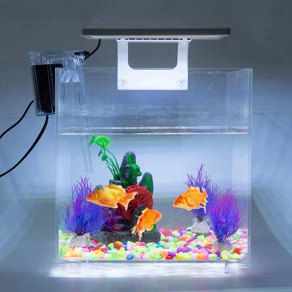Fish Aquariums, Acrylic Fish Tank with LED Lighting and Internal Filter Mini Square Aquarium 110V(US Plug) for Home and Kids by Estink
