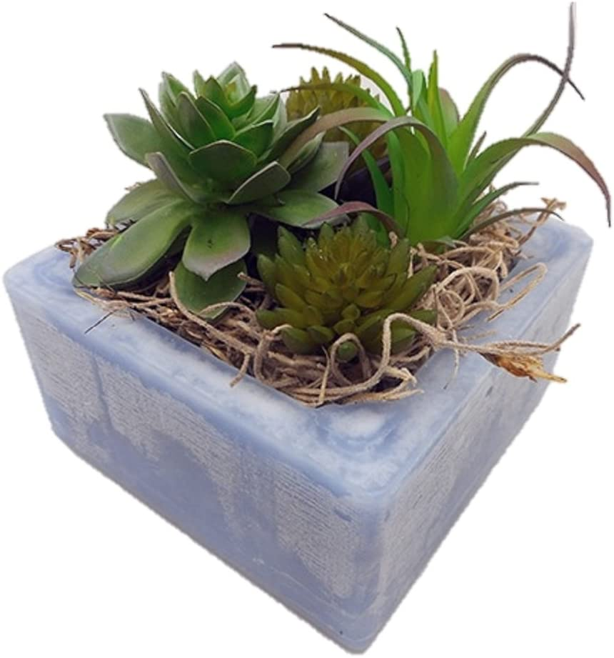 Habersham Candle Co. Cactus Water Succulent GEO Cube Candle