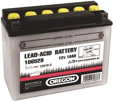 Oregon Scientific - Batería para cortacésped (12 V, 18 Ah, para modelos MTD/Etesia Bahia/Stiga): Amazon.es: Bricolaje y herramientas