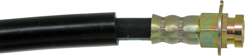 Dorman H38250 Hydraulic Brake Hose