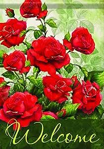 Carson Home Accents FlagTrends clásicos bandera de Jardín, Rosa bienvenida