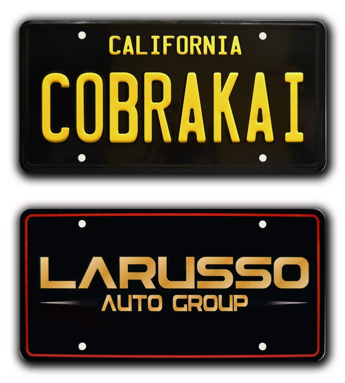 Celebrity Auto Group >> Celebrity Machines Cobrai Kai Larusso Auto Group Metal