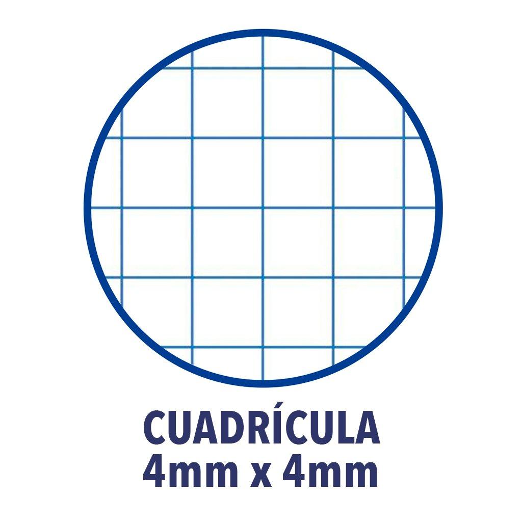 copertina extradura. Oxford Classic 100430151/ /Confezione da 5/Quaderni a spirale