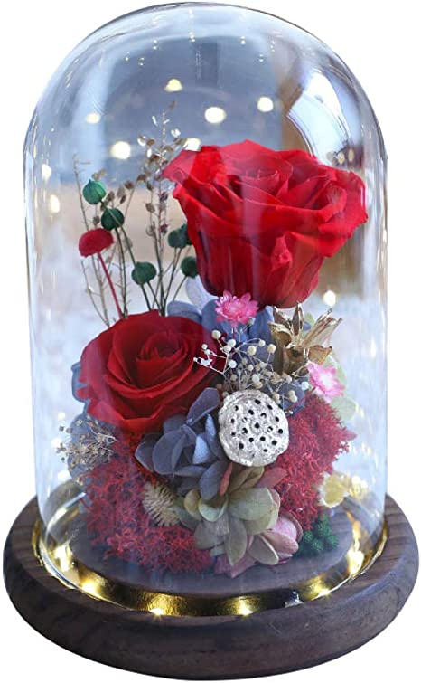 Enchanted Forever Red Rose Flower In Glass LED Light Dome For Valentine/'s Day