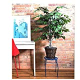 artificial evergreen bushes - Artificial Ficus Tree Weeping Fake Indoor Large Realistic Bush Tropical Potted Evergreen & eBook OISTRIA