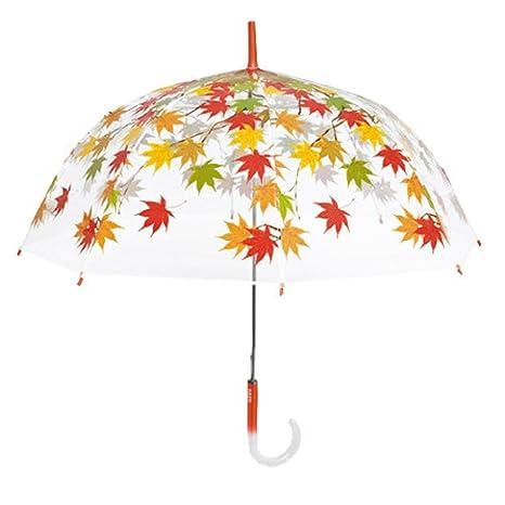 Paraguas transparente cúpula hojas