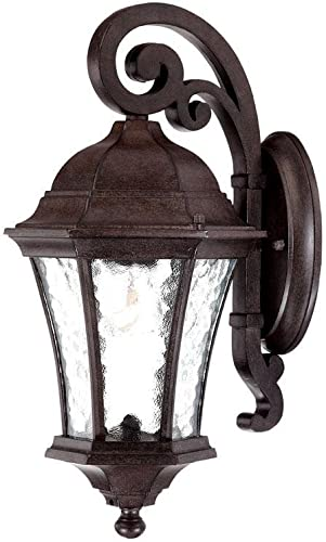 Acclaim 3602BC Waverly Collection 1-Light Wall Mount Outdoor Light Fixture, Black Coral