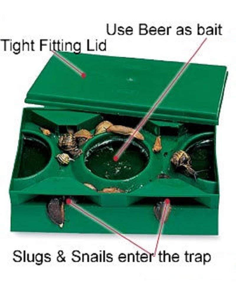 3XSlug X Trap - Green Garland