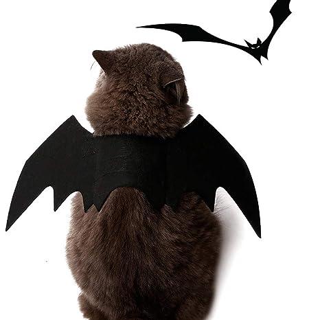 Takefuns Disfraz de Gato para Cosplay, murciélago, murciélago ...