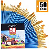 Arts & Crafts : AROIC Paintbrushes Set, 50 pcs Nylon Hair Brushes for Acrylic Oil Watercolor Artist Professional Painting Kits Pack