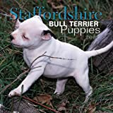 Staffordshire Bull Terrier Puppies 2001 Calendar