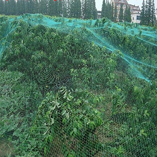 Anti-Bird Netting,13x32.5 Feet Plant Garden Bird Netting Trellis Net Plant Fruit Tree Protect Sparrow Pest Catching Mesh, (Mesh Tree)