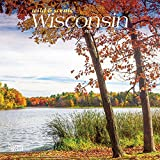 Wisconsin Wild & Scenic 2020 7 x 7 Inch Monthly Mini Wall Calendar, USA United States of America Midwest State Nature