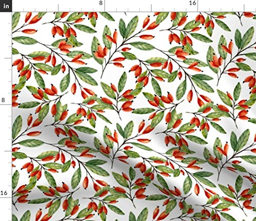 Spoonflower Botanical Fabric - Holly Winter Holiday Christmas Decor Berries Red Summer Branches Twig Leaf Barberry by Juliabadeeva Printed on Petal Signature Cotton Fabric by The Yard