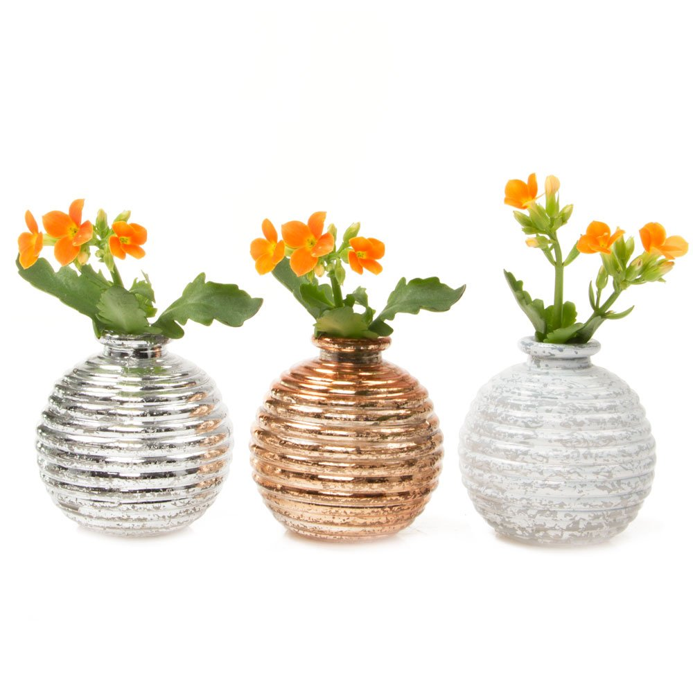 225 & Chive - Set of 6 Smasak Small Round Glass Flower Vase Decorative Rustic Floral Vase for Home Decor Living Room Centerpieces and Events Single Flower ...
