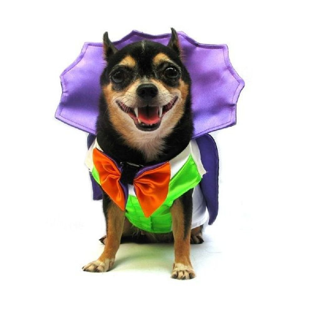 Dog Costumes Dress Your Dogs As Dracula Vampire