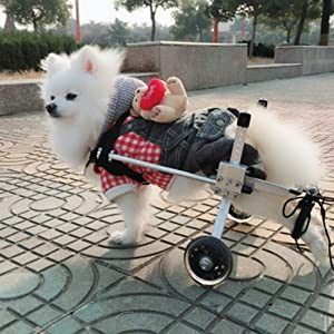 LXJYMX Pet Prosthesis Dog Wheelchair Rear Limbs Disabled pet Scooter hind Leg Assist (Color : A, Size : S) (Color: A, Tamaño: S)