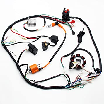 Cool Complete Electrics Atv Quad 150Cc 200Cc 250Cc 300Cc 3 Holes Stator Wiring Cloud Staixuggs Outletorg