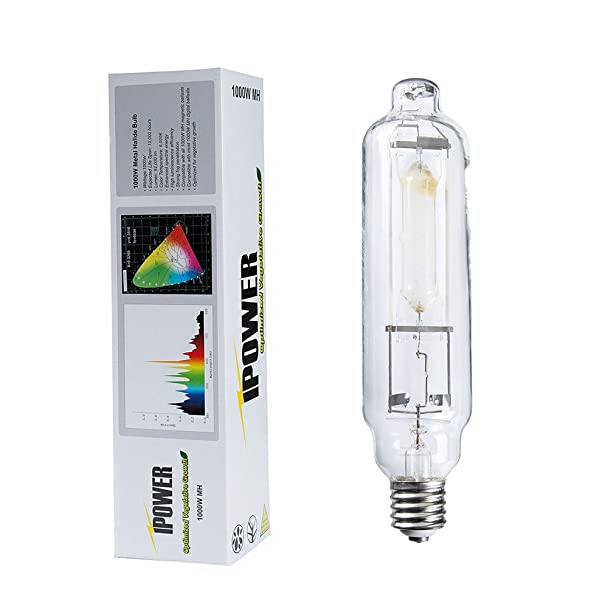 Amazon ipower 1000 watt metal halide mh grow light lamp bulb amazon ipower 1000 watt metal halide mh grow light lamp bulb full spectrum 6000k plant growing light fixtures garden outdoor stopboris Gallery