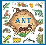 : The Life and Times of the Ant