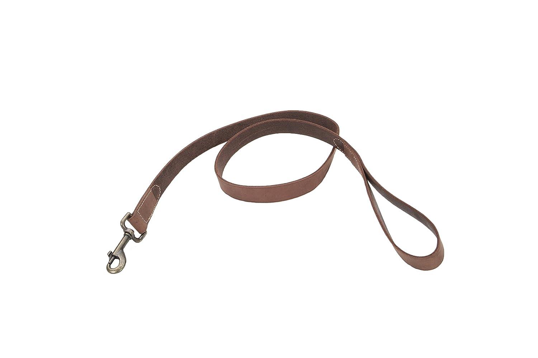 Coastal Pet Products Circle T Rustic Leather Dog Leash, 1  x 4', Chocolate(03048 CHL04)