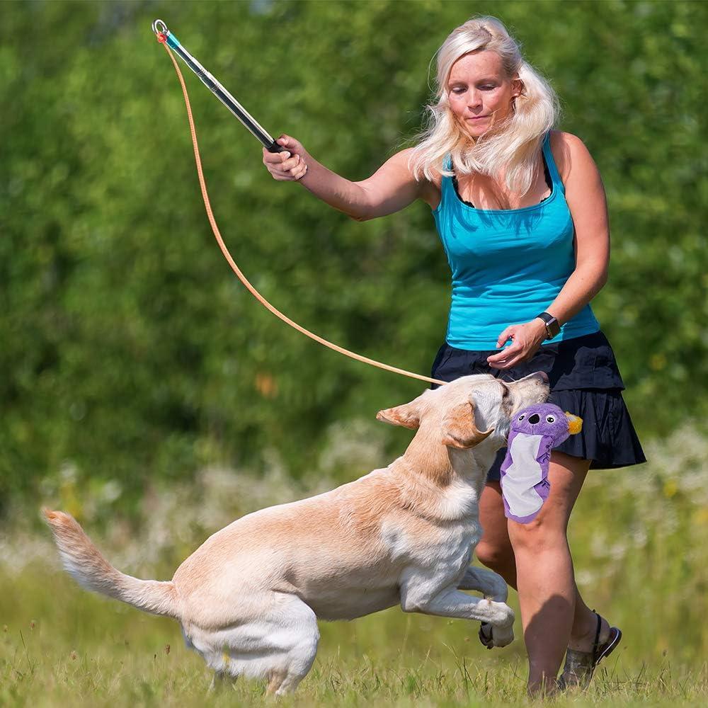 AWOOF Dog Flirt Pole Squaeky Toys Set Soft Teaser Plush Toys for Dog Puppy Safe /& Strong Interactive Dog Tug Toys for Training