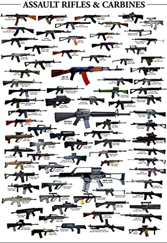 NewBrightBase Guns-Military Rifles Charts Fabric Cloth Rolled Wall Poster Print - Size: (36