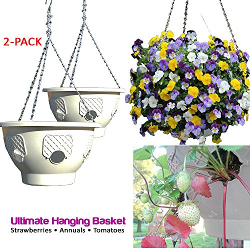 Resin Deck 7.5 - Ultimate Hanging Baskets - Strawberry, Tomato, Flower, and Herb Outdoor Planters - Use Garden Pots For Growing Plants Outside On A Deck, Fence, or Balcony (2, Stone)