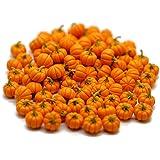 1shopforyou 20 Psc ฺFake Fruit Artificial Mini Pumpkins Halloween Dollhouse Miniatures Food Kitchen