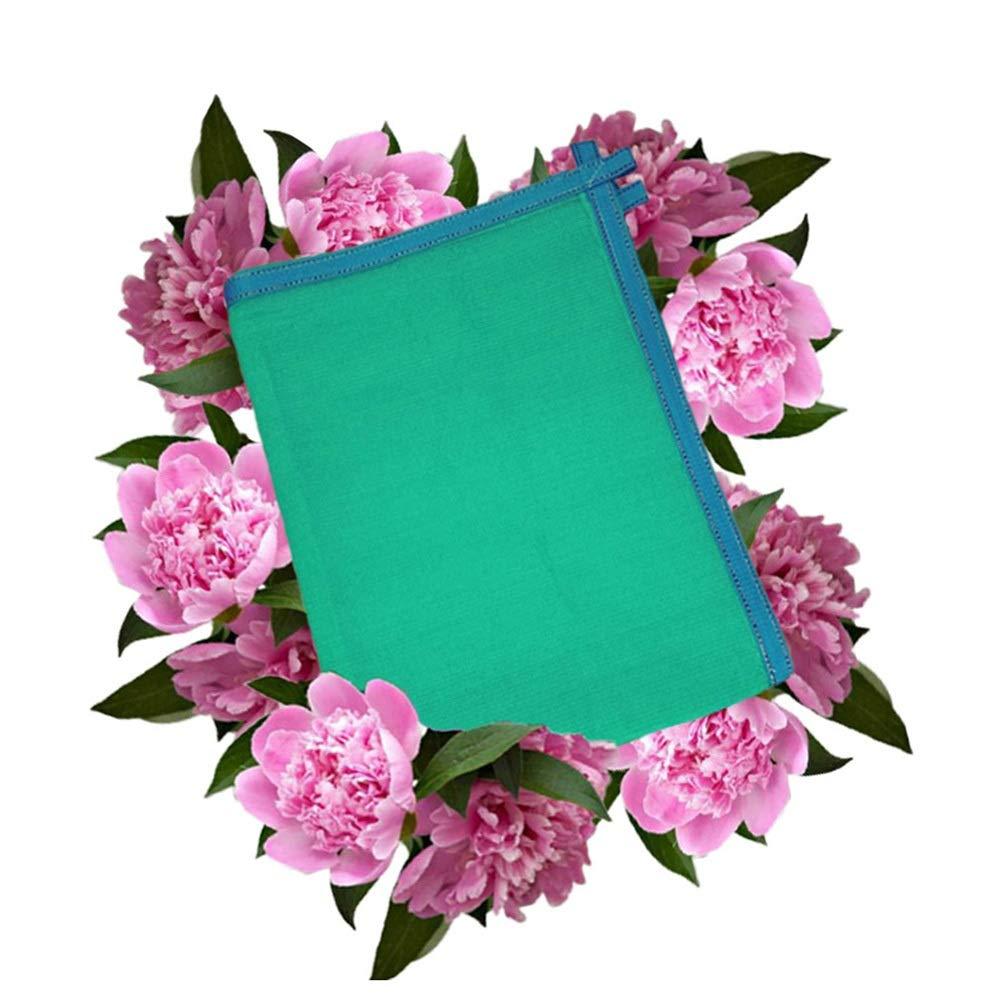 遮光ネット 温室シェードネット、耐紫外線ネット85%暗号化率ガーデン花植物(色:緑、サイズ:2m×4m) バイザー布 (Size : 4m x 6m) B07TD3H1B6  4m x 6m