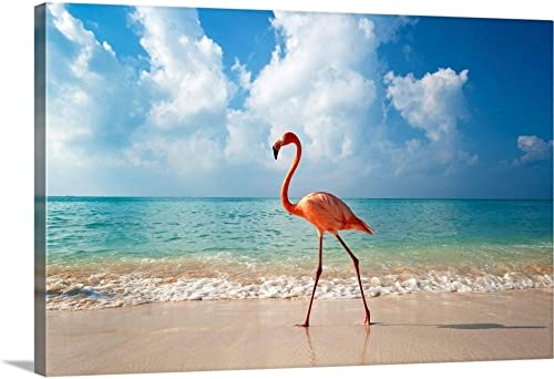 Flamingo Walking Along Beach Canvas Wall Art Print