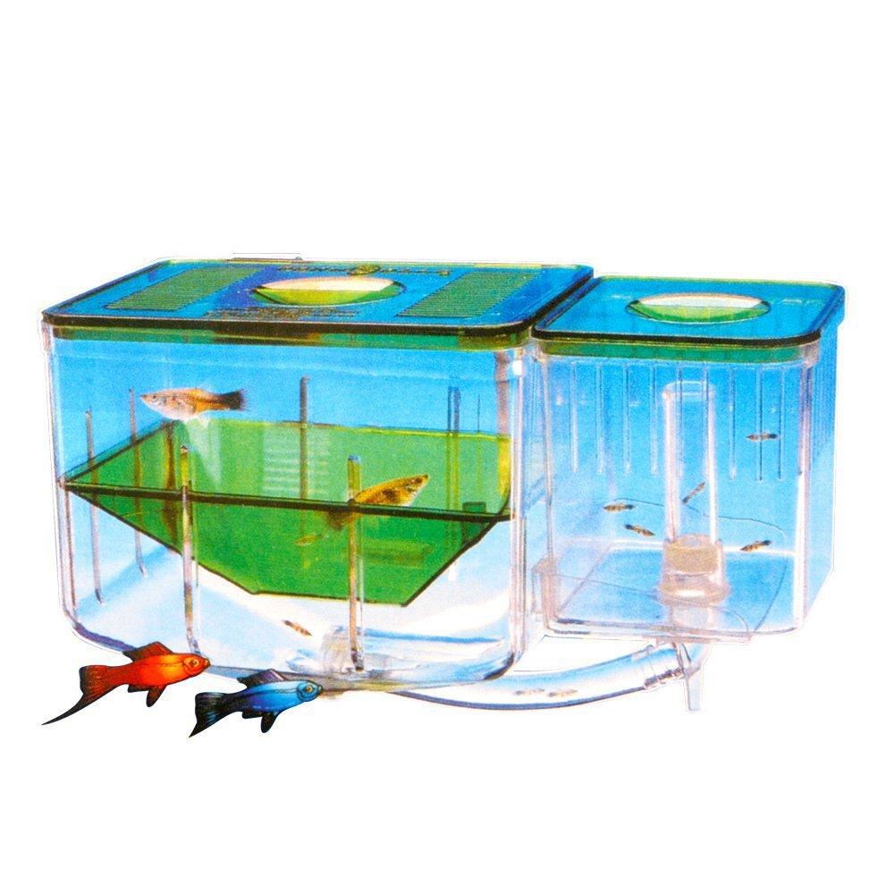 Saim Fish Breeding Tanks Aquarium Nursery Automatic Circulating Hatchery Aquarium for Baby Fishes Shrimp Clownfish and…
