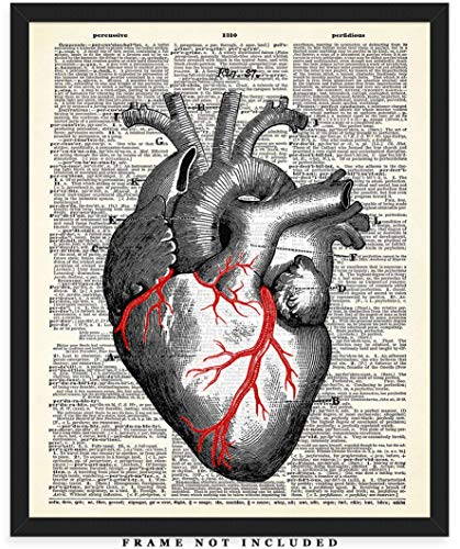 Human Heart Anatomy Dictionary Wall Art Print: Unique Room Decor for Boys, Men, Girls & Women - (8x10) Unframed Picture - Great Gift -
