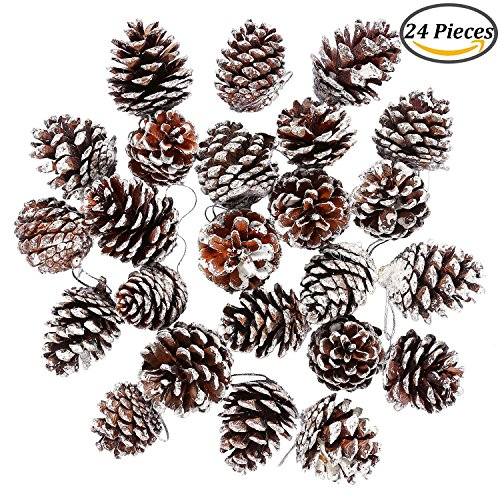 Coobey 24 Pieces Christmas Pine Cones Ornament Natural PineCones With String Pendant Crafts for Gift Tag Christmas Tree Party Hanging Decoration (Pinecone Christmas Crafts)