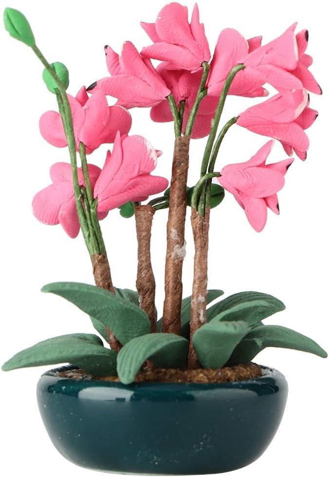 1:12 miniature bonsaï jardin accessoire fleur balcon