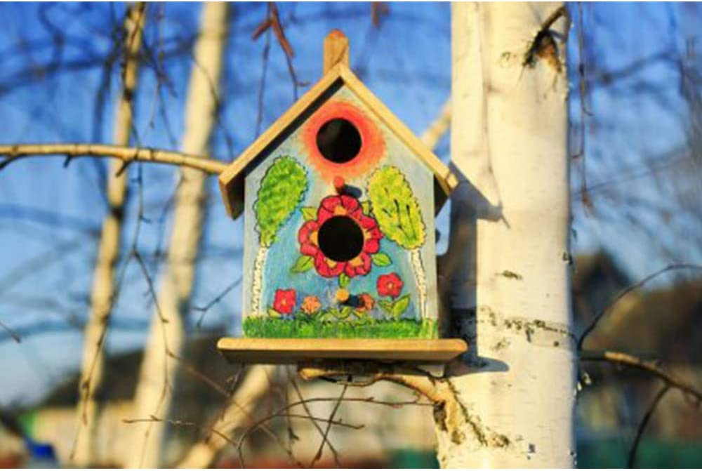 Radiancy Inc DIY Bird House DIY Nest House Unfinished Unpainted Wooden DIY Bird Houses Box to Paint Assemble for Outside for kids 2Pcs