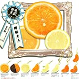 Citrus Lady mascots & charm 12 pieces with breathing