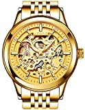 PASOY Men's Automatic Mechanical Watch Sapphire Glass Luminous Gold Stainless Steel Skeleton Dial Watches