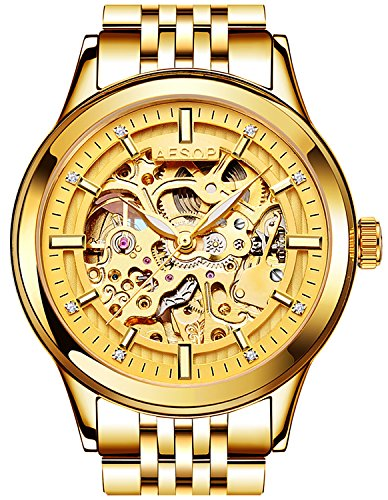PASOY Men's Automatic Mechanical Watch Sapphire Glass Luminous Gold Stainless Steel Skeleton Dial Watches by PASOY