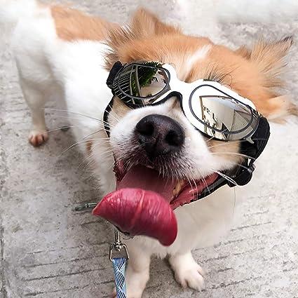 KDSANSO Pet Perro Gafas de Sol Perro Gafas Impermeable ...