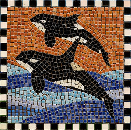 "DIY Mosaic Art Kit 7"" Square, 20x20cm, Orca 2"