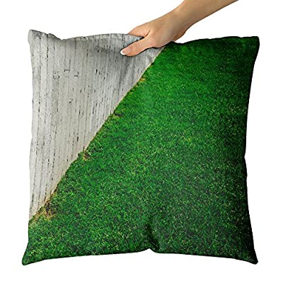 Westlake Art Decorative Throw Pillow - Grass Lawn - Photography Home Decor Living Room - 18x18in