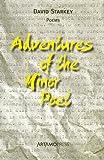 Adventures of the Minor Poet, David Starkey, 0978847539